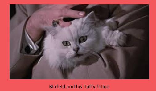 blofeld and feline